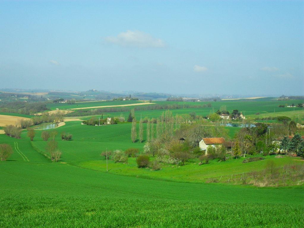 LARROQUE- SAINT-SERNIN